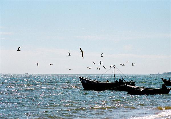 秋天秦皇岛最适合秋游的地方有哪些